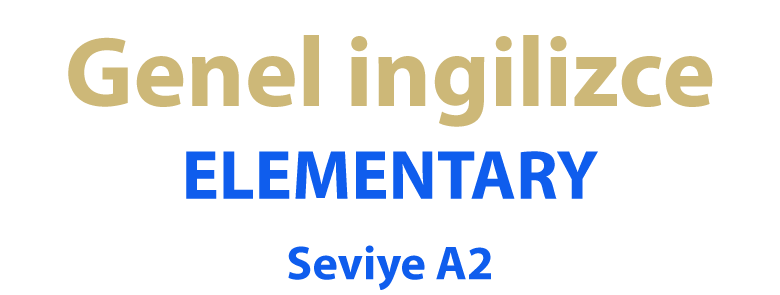 Elementary A2 - bitgab Academy - Learn English Online