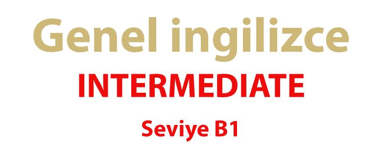 Intermediate B1 - bitgab Academy - Learn English Online